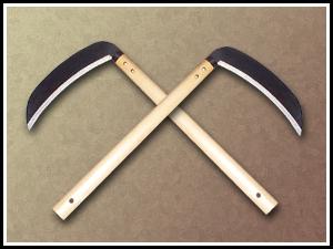Ninja Chain Sickle | Randy Cunningham: 9th Grade Ninja Wiki ...